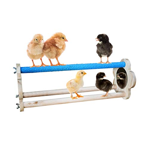 Vehomy Chicken Perch for Chicks Chicken Wood Stand with Mirrors Chick Stand...