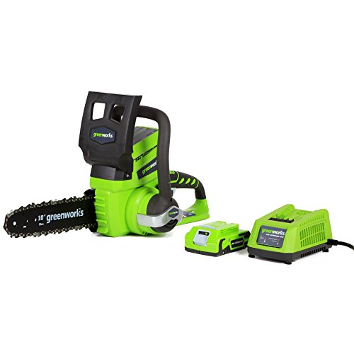 Greenworks 24V 10-Inch Cordless Chainsaw, 2Ah Battery and Charger Included,...