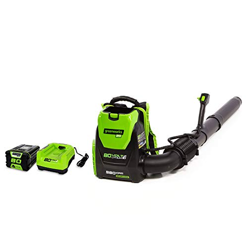 Greenworks 80V 145MPH - 580CFM Cordless Backpack Leaf Blower, 2.5Ah Battery...