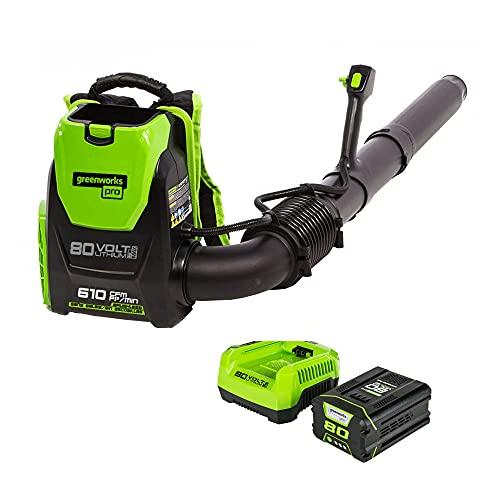 Greenworks Pro 80V (180 MPH / 610 CFM) Cordless Backpack Leaf Blower, 2.5Ah...