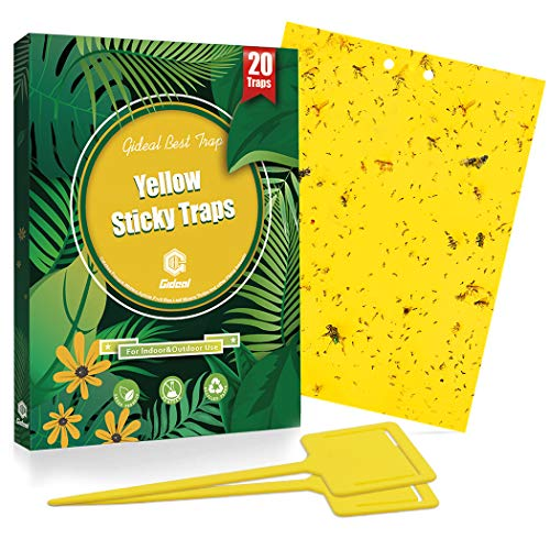 Gideal 20-Pack Dual-Sided Yellow Sticky Traps for Flying Plant Insect Such...