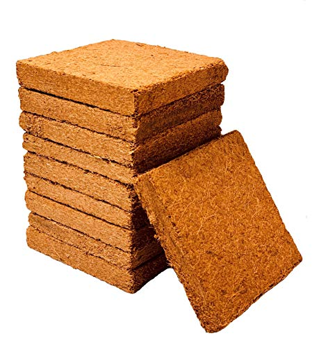 Coco Bliss Premium Coco Coir Brick 250g, OMRI Listed for Organic Use (10...