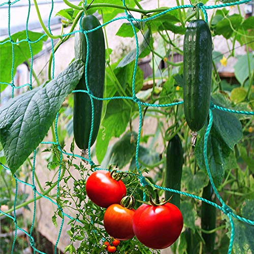 Miuezuth Trellis Netting for Climbing Plants - Heavy Duty Garden Trellis...