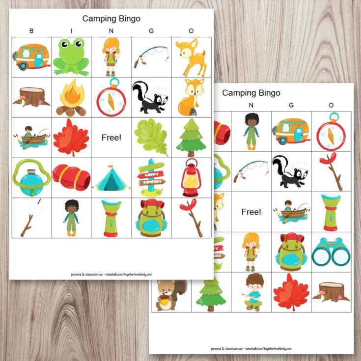 Free Printable Camping Bingo (easy rainy day camping activity!)