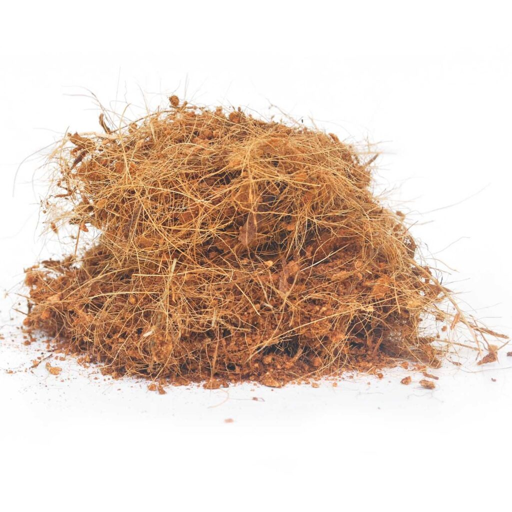 A small pile of dry coconut coir on a white background. Coconut coir is used as a soil additive instead of peat moss.