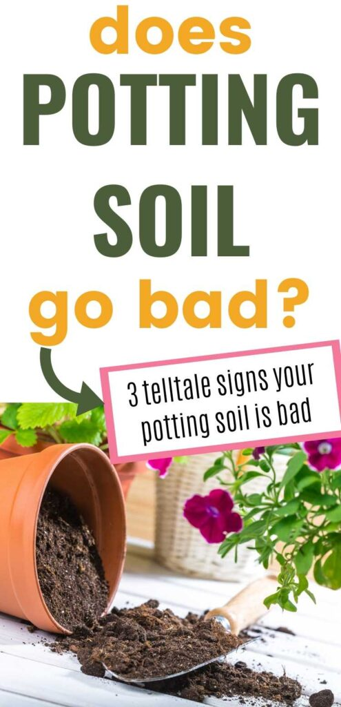 "Text ""Does potting so go bad? 3 telltale signs your potting soil is bad"" wit a picture of a terra cotta pot on its side. Potting soil is in the pot and spilling onto the table. There is a spade on the table and purple flooring plants in the background."