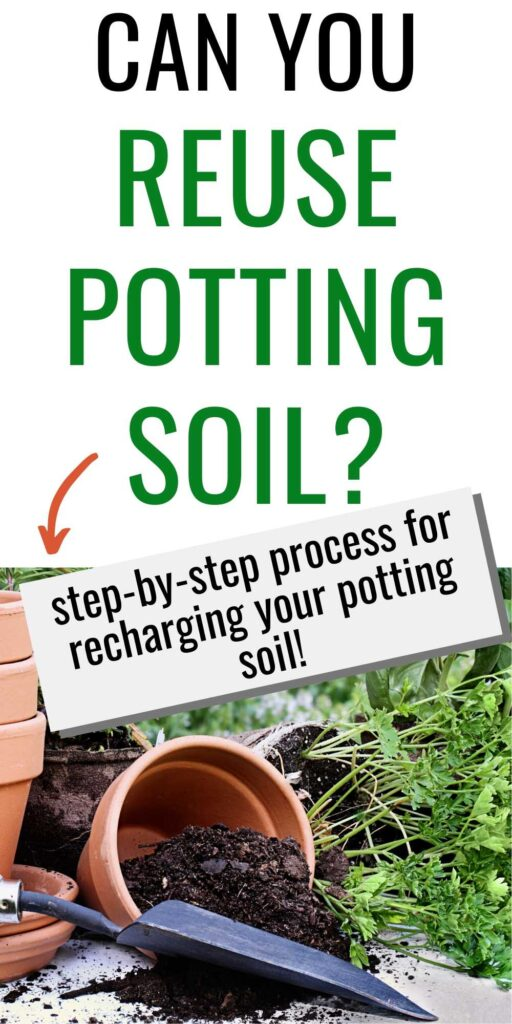 "text ""can you reuse potting soil? Step-by-step process for recharging your potting soil."" Below the text is an image with a clay pot of dirt full of potting soil tipped on its side. There is a trowel in front of the pot and a parsley plant behind waiting to be transplanted"