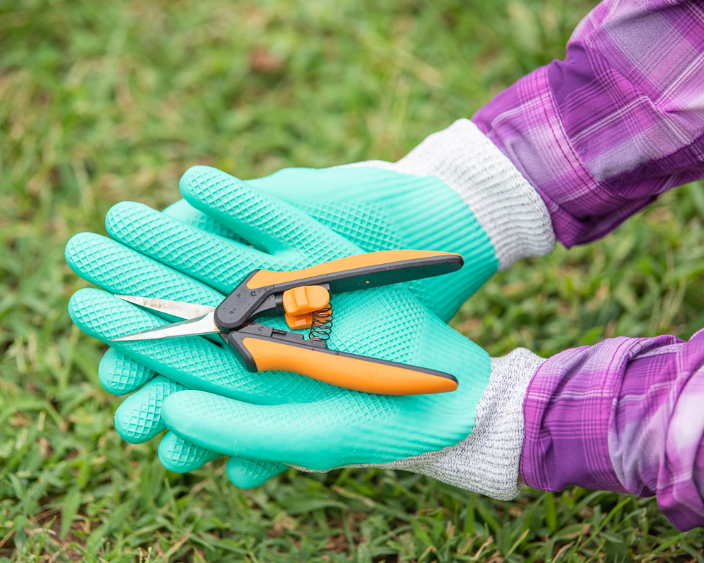 A pair of gloved hands holding orange and black small garden snips. The gloves have a teal coating on the palms and a woman's wrists and forearms are visible wearing a bright purple plaid shirt