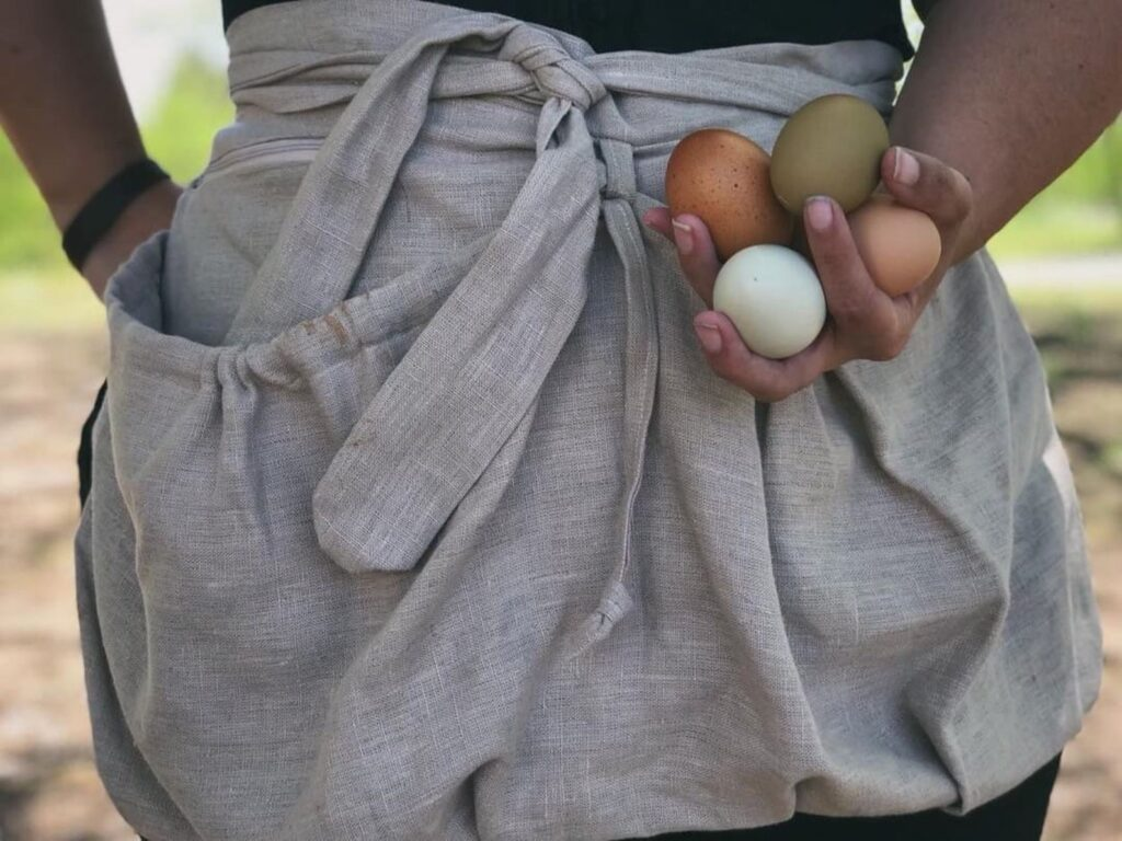 Close up of a linen harvesting apron being worn by a woman holding four colorful chicken eggs in her left hand. Only the apron and her forearms are visible.