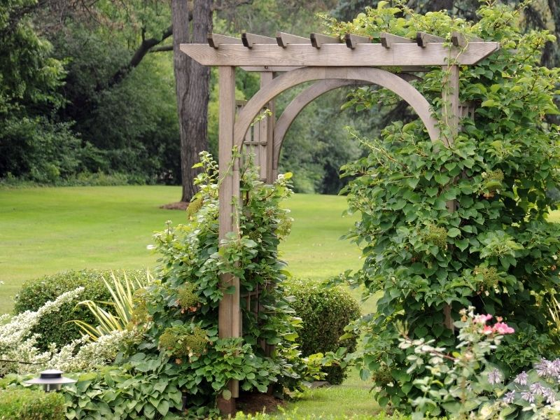 A wood arbor in a garden covered with vining plants and flowers
