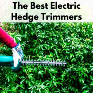 "text overlay ""the best electric hedge trimmers"" over a picture of an arm in a red sleeve with a garden glove holding a hedge trimmer against a hedge"