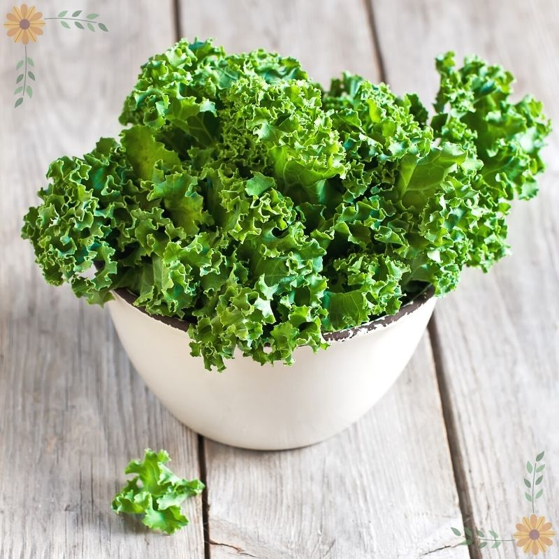 A white bowl of curly green kale on a light wood table.