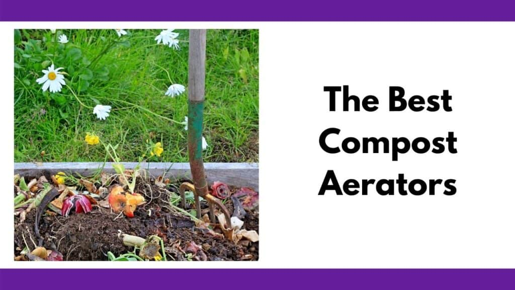"""Text """"The best compost aerators"""" next to a pitchfork staked in a pile of compost box with a visible apple and red onion in the pile. Surrounding the box is a grassy patch with some dandelions growing."""