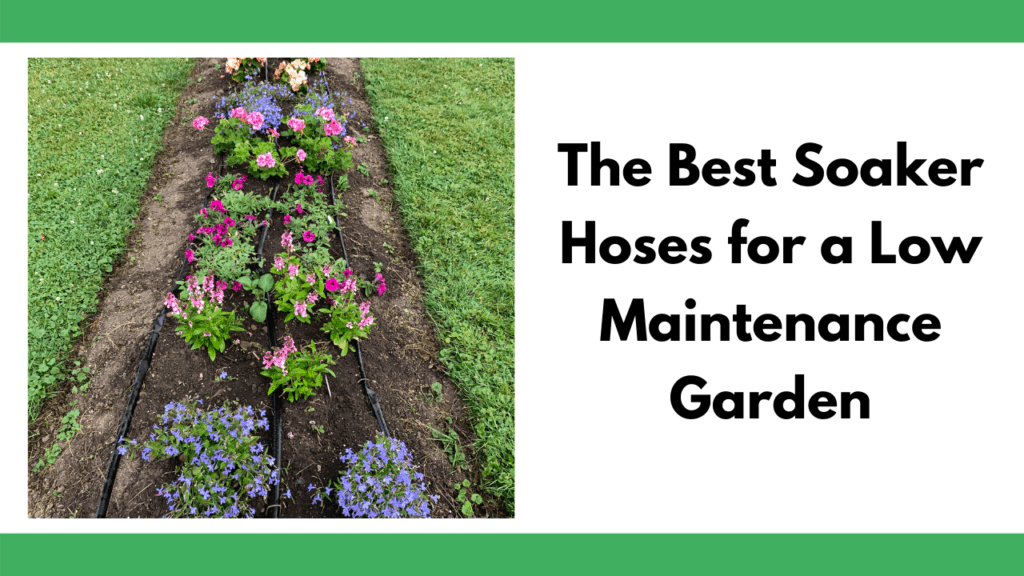 "Text ""the best soaker hoses for a low maintenance garden"" next to an image of a flowerbed with three rows of soaker hose on it."
