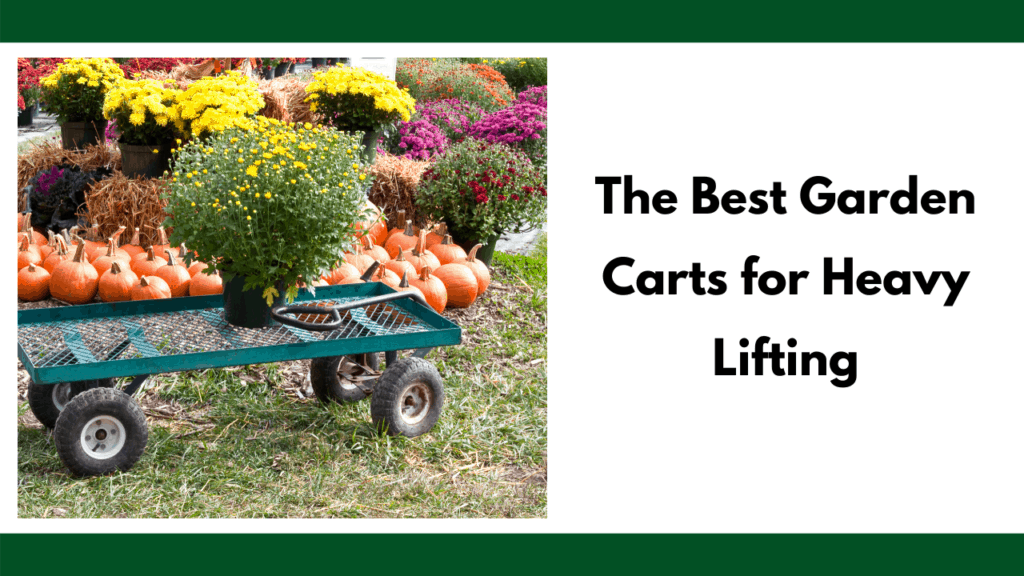 """Text reads """"The best garden carts for heavy lifting"""" to the right of a photo of a steel garden cart with a potted plant on top. The background is a series of flowers and pumpkins arranged for an autumn season."""