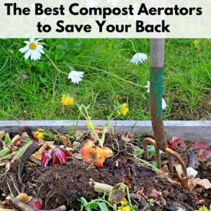 "Text banner at the top ""The best compost aerators to save your back"" on a translucent white background. Photo below is of a pitchfork staked into a compost bin with visible apple cores and red onions peels. The top of the photo is of a grassy patch with dandelions growing."