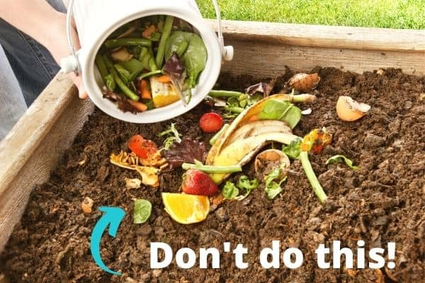 """A close up of someone adding a bucket of kitchen scraps on top of a compost pile. The scraps are large pieces, like a whole banana peel. An arrow points at the scraps and there is a text overlay on the bottom """"Don't do this!"""""""