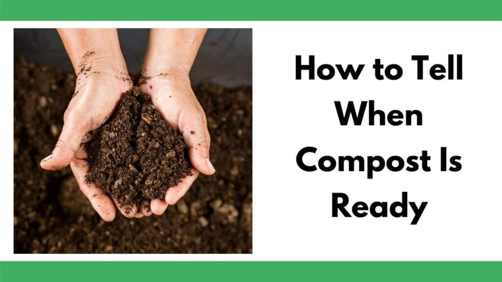 """Text """"How to tell when compost is ready"""" next to an image of hands holding rich, ready compost."""