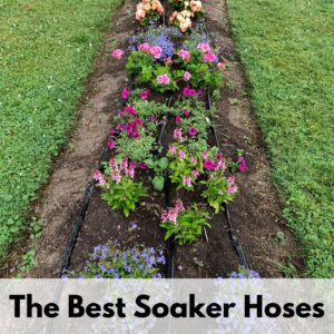 "text overlay ""the best soaker hoses"" on the bottom of an image of a flowerbed with soaker hoses on it"