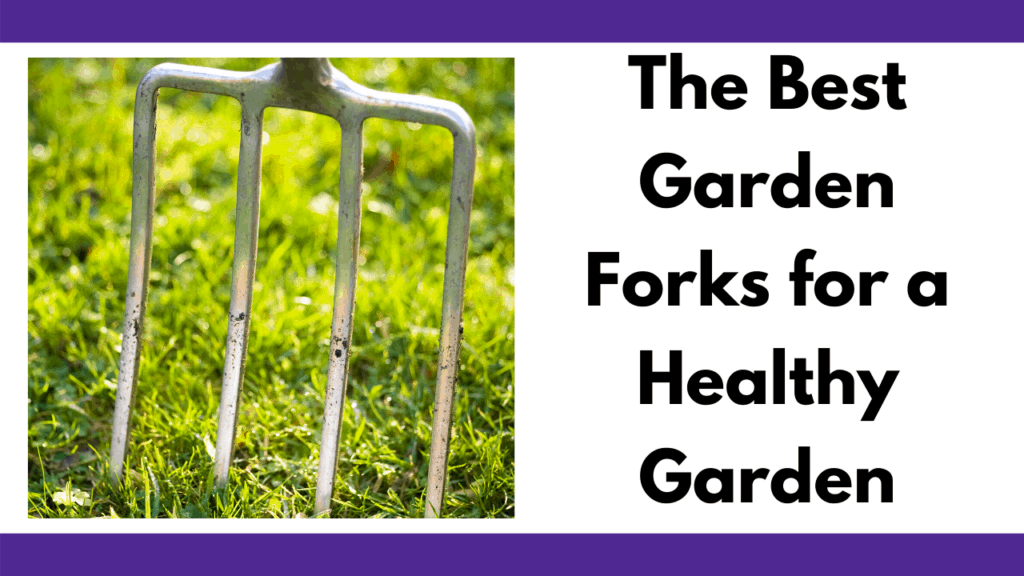 """Text reads """"The best Garden Forks for a Healthy Garden."""" In black font. To the left is a photo of a garden fork with 4 stainless steel tines slightly stabbed into the ground of a green grass patch."""