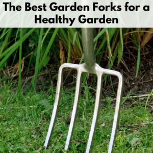 """Text reads """"The best garden forks for a healthy garden"""" on a semi transparent white background above a photo of a garden fork with 4 stainless steel tines. The garden fork is standing vertically in a green grass setting at the edge of a mulch line of a garden."""