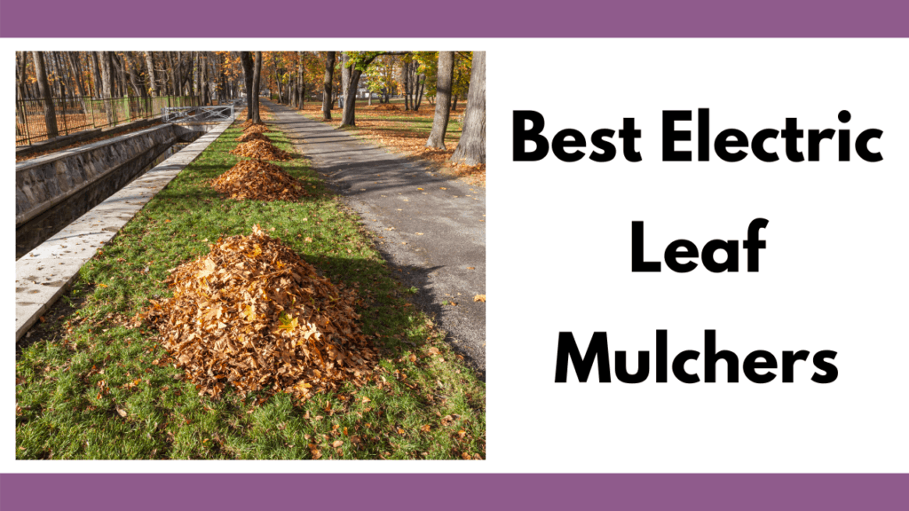 """Text reads """"Best Electric Leaf Mulchers"""" to the right of a photo. Photo depicts multiple leaf piles in a row on a grassy patch in a park setting. To the right is a walking path; to the left is a small water canal."""