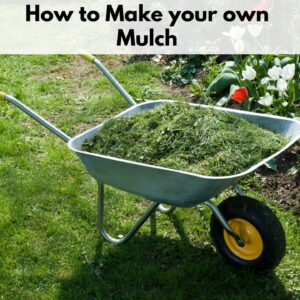 "text overlay ""how to make your own mulch"" above an image of a wheelbarrow filled with grass clippings."