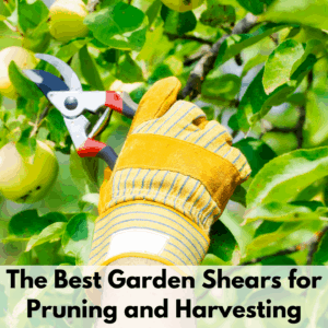 """Text reads """"The best garden shears for pruning and harvesting"""" on a white transparent background. On top is a photo of a yellow gloved hand holding a set of garden pruners harvesting a green apple from an apple tree."""