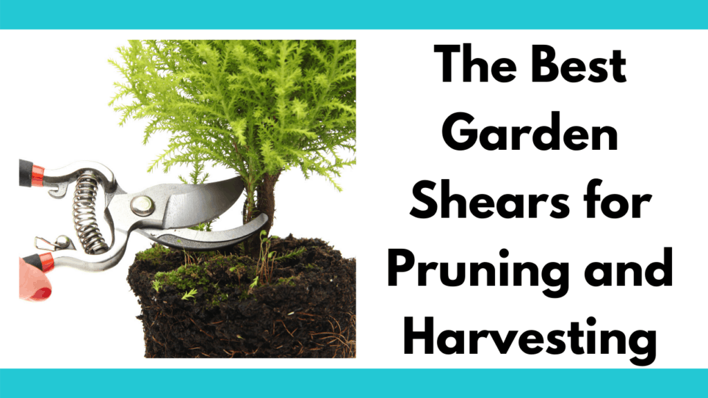 "Text reads ""The best garden shears for pruning and harvesting."" To the left is a photo of a person holding a garden pruner and cutting the stem of a small shrubby plant from a mossy pot."