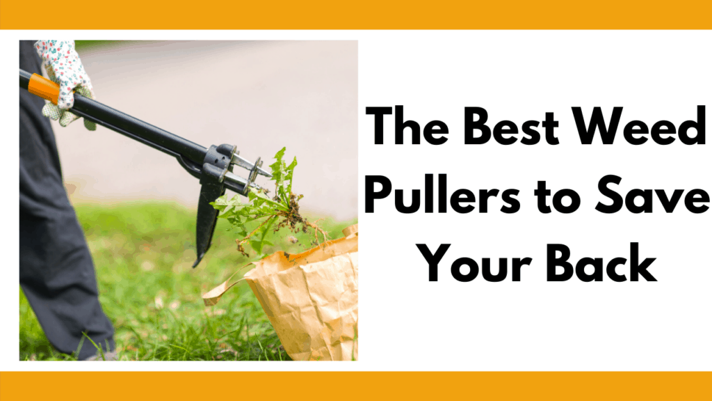 """Text reads """"The best weed pullers to save your back"""" in bold black letters. To the left of the letters is a photo of a person with black pants and cloth garden gloves using discarding a weed from their stand-up weed puller into a brown paper bag. Background setting is on the side of a person's driveway."""
