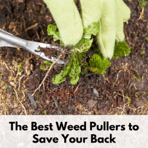"""Text reads """"the best weed pullers to save your back"""" in bold black letters on a transparent white text box. Photo above is of a person with green cloth garden gloves using a weed puller to remove a weed from a patch of dirt."""
