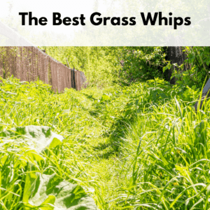 """Text box at the top of the photo reads, """"The best grass whips."""" Photo below is of a an overgrown trail with grass encroaching on the trail from the left and right of the path."""