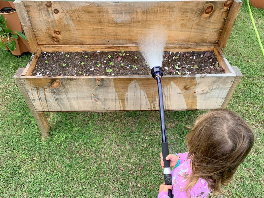 A young child in pink pajamas using a purple watering wand to water radish seedlings