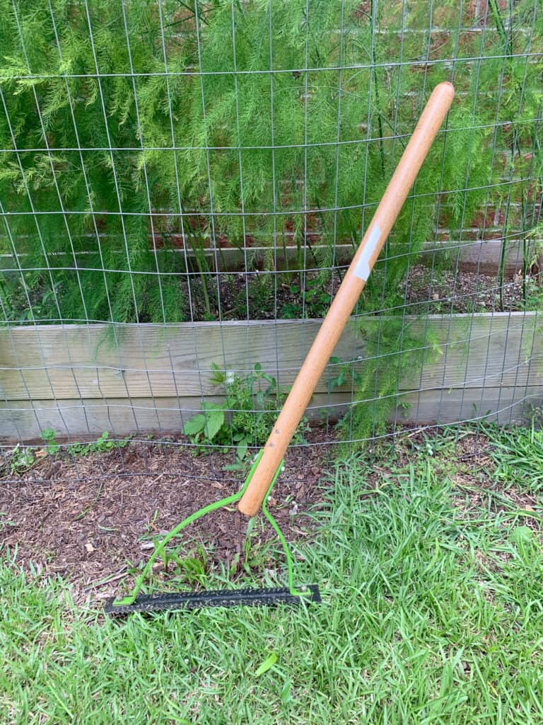 An Ames grass whip leaning against an asparagus bed
