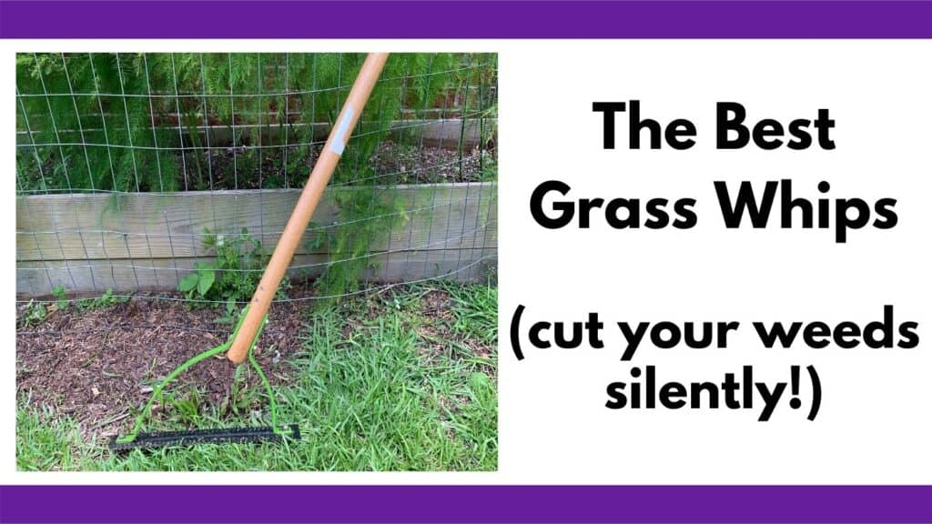 """Test """"the best grass whips (cut your weeds silently!)"""" next to a picture of an Ames weed whip leaning against an asparagus bed."""