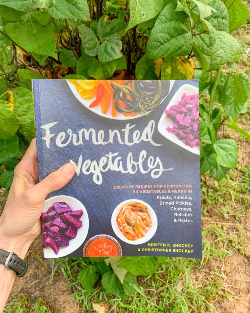 """A hand holding a book """"Fermented Vegetables"""" in front of a vertical bean planter"""