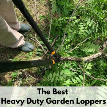 """text overlay """"the best heavy duty garden loppers"""" above an image with a person using black garden loppers to cut a walnut tree branch"""