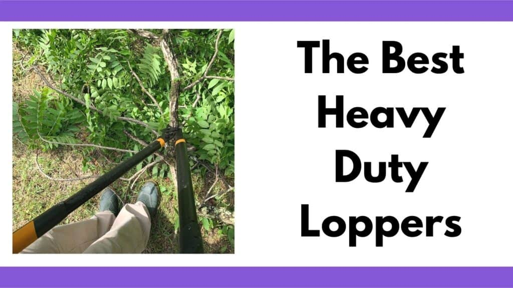 """text """"the best heavy duty loppers"""" next to an image of a person using black handled loppers on a walnut branch"""