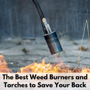 """Text reads, """"The best weed burners and torches to save your back."""" The text is on a white text box at the bottom of a photo. The photo is of a weed torch burning a patch of weed grass. The background is a gray landscape and is out of focus."""