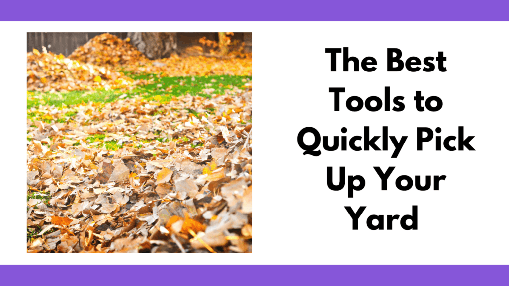 """Text reads """"the best tools to quickly pick up your yard."""" To the left of the text box is a photo of a green lawn covered with autumn leaves. There are two piles of leaves in the background which is out of focus."""