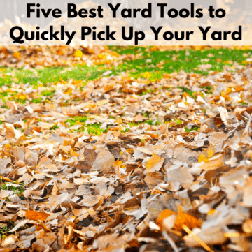 """Text reads """"five best yard tools to quickly pick up your yard."""" Below the text box is a photo of a green lawn littered with autumn leaves."""